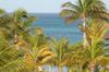 Aruba_0331